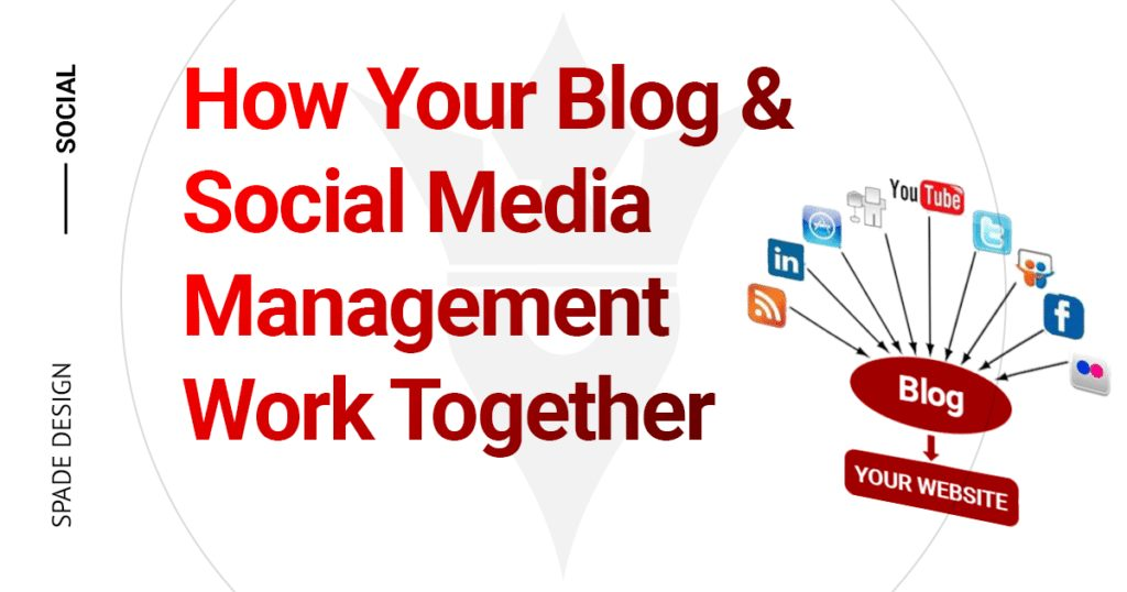 How Your Blog and Social Media Management Work Together, social media tyler, social media company, social media management
